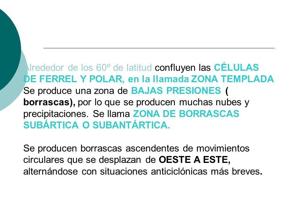 Alrededor de los 60º de latitud confluyen las CÉLULAS DE FERREL Y POLAR, en la llamada ZONA TEMPLADA