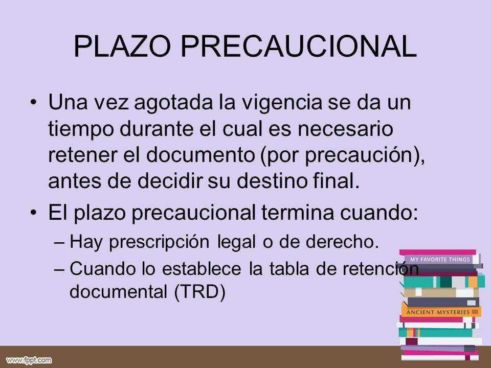 PLAZO PRECAUCIONAL