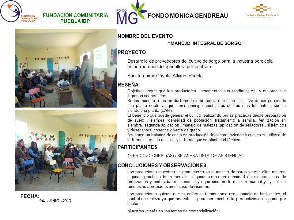 FUNDACION COMUNITARIA PUEBLA IBP MANEJO INTEGRAL DE SORGO