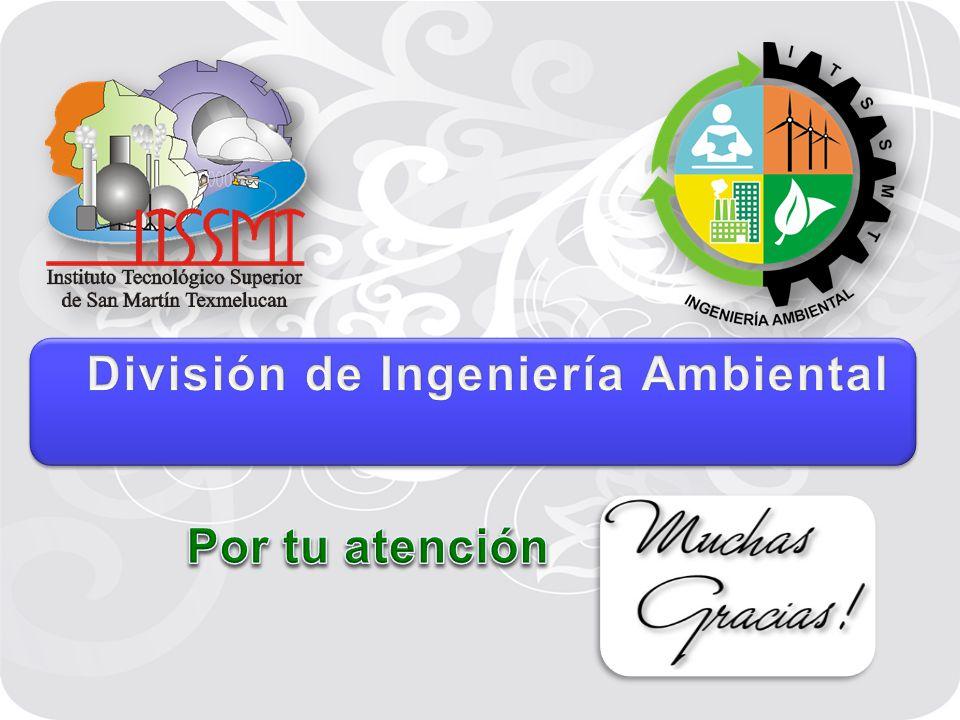 División de Ingeniería Ambiental
