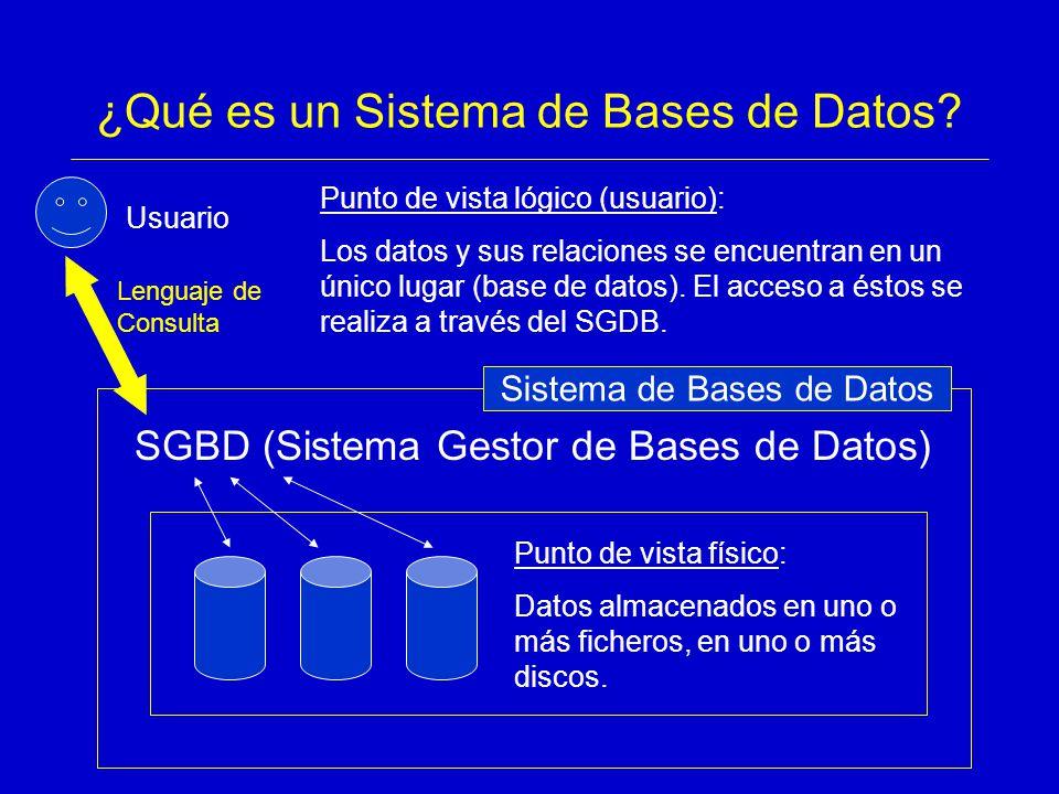 ¿Qué es un Sistema de Bases de Datos
