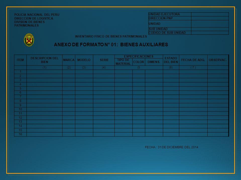 ANEXO DE FORMATO N° 01: BIENES AUXILIARES