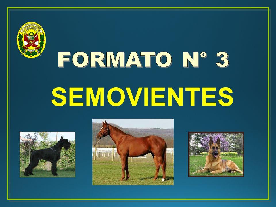 FORMATO N° 3 SEMOVIENTES 18