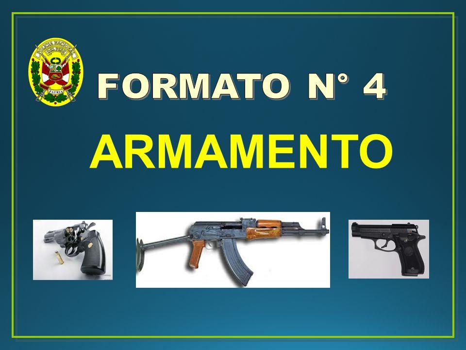 FORMATO N° 4 ARMAMENTO 20