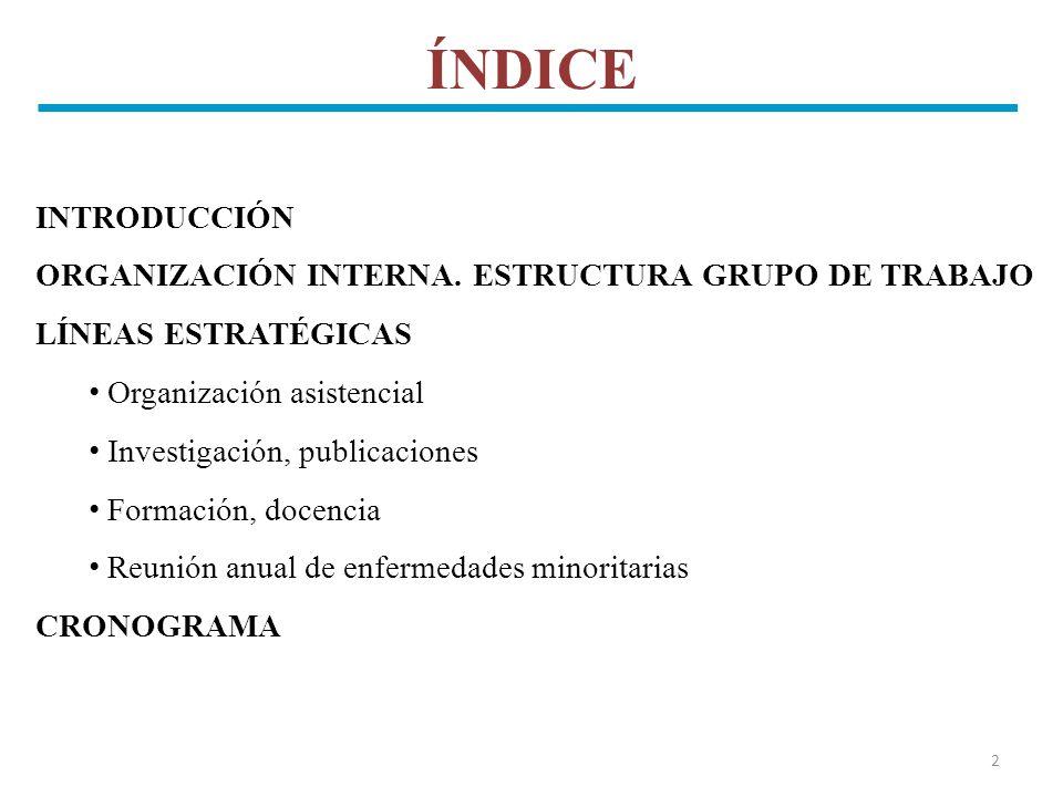 ÍNDICE INTRODUCCIÓN ORGANIZACIÓN INTERNA. ESTRUCTURA GRUPO DE TRABAJO