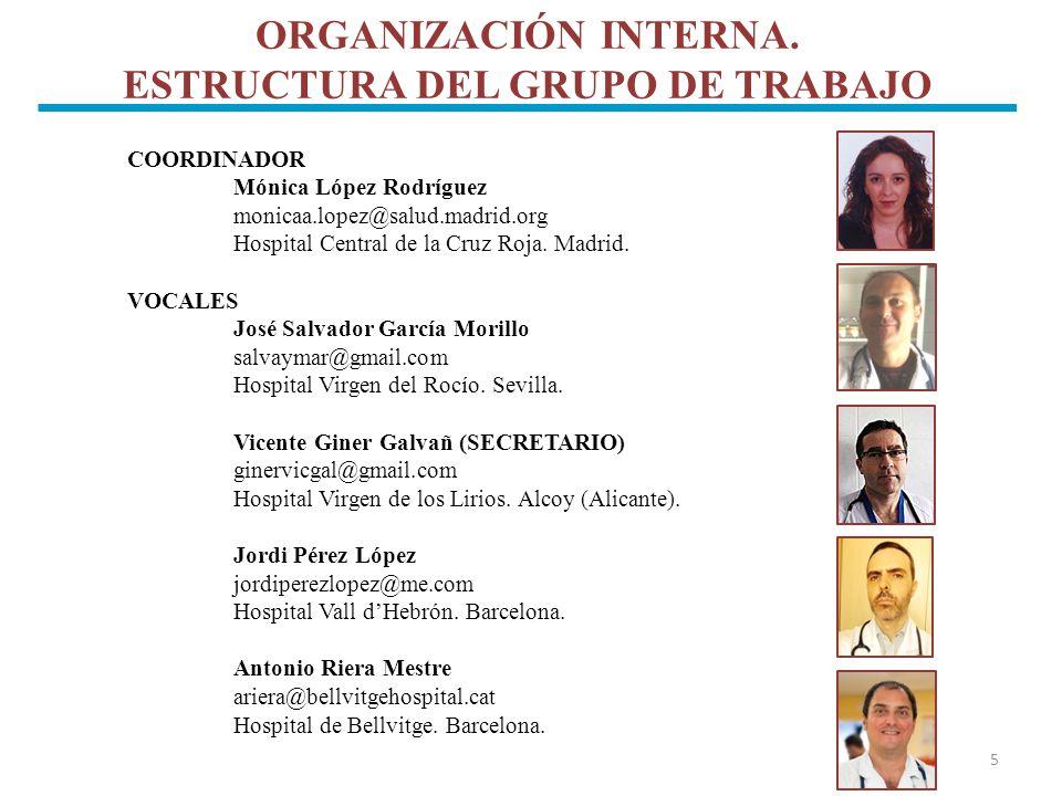 ORGANIZACIÓN INTERNA. ESTRUCTURA DEL GRUPO DE TRABAJO