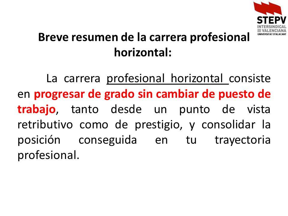 Breve resumen de la carrera profesional horizontal: