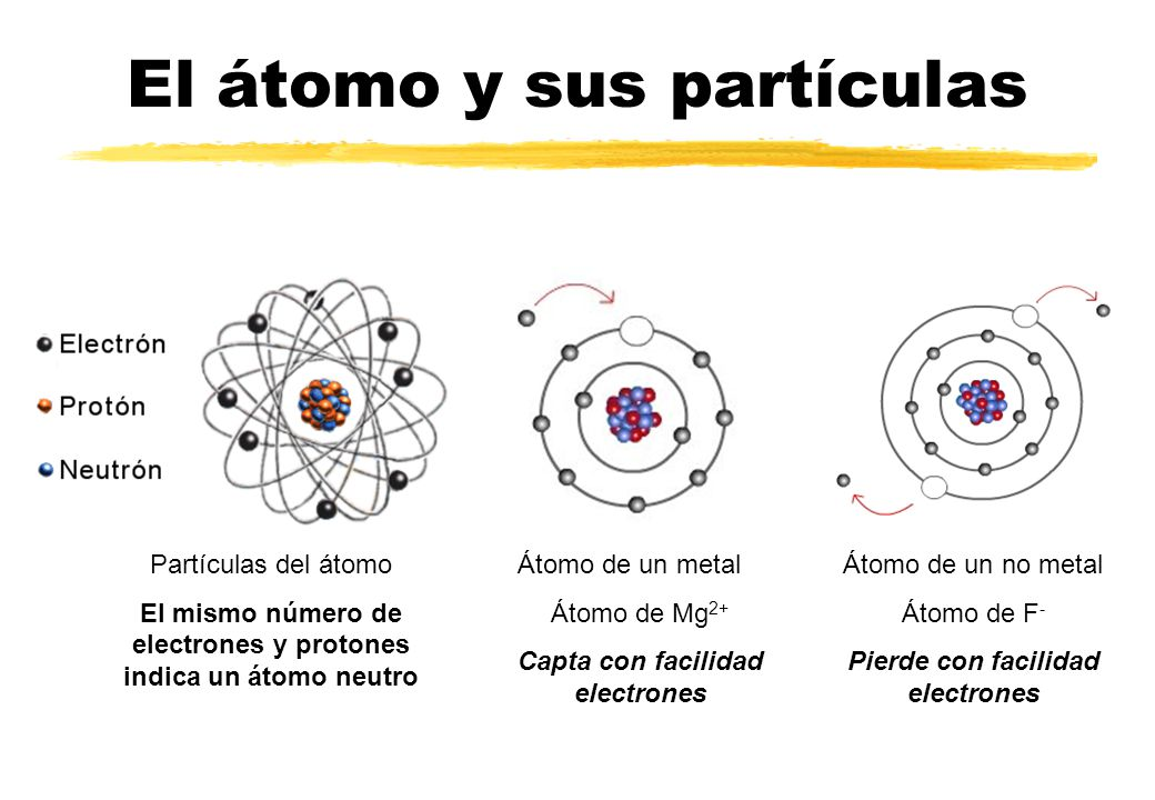 El átomo y sus partículas