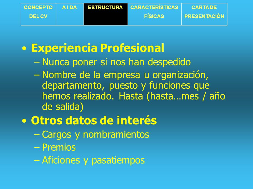 Experiencia Profesional