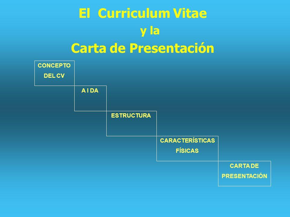 El Curriculum Vitae Carta de Presentación