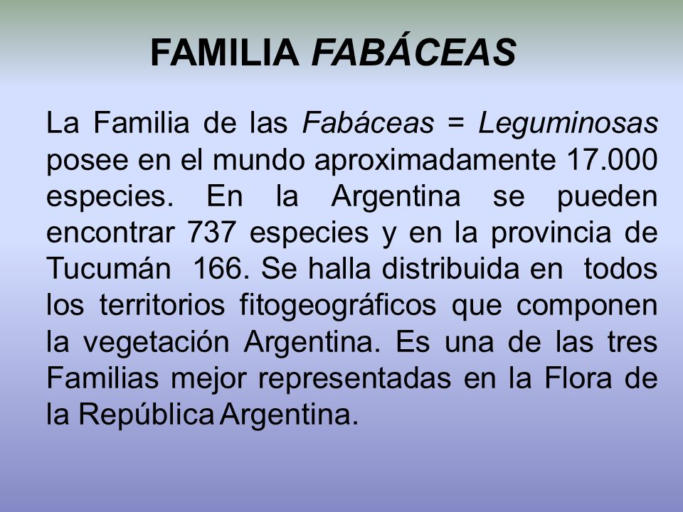 FAMILIA FABÁCEAS