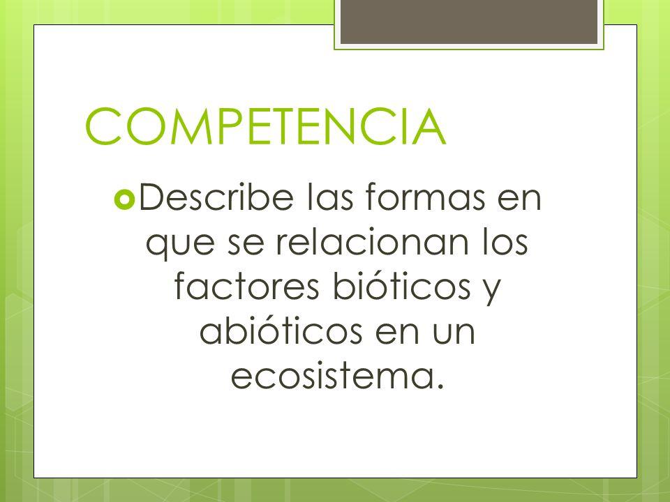 COMPETENCIA Describe las formas en que se relacionan los factores bióticos y abióticos en un ecosistema.