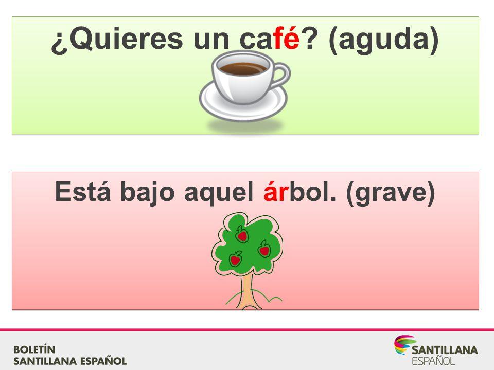 ¿Quieres un café (aguda) Está bajo aquel árbol. (grave)