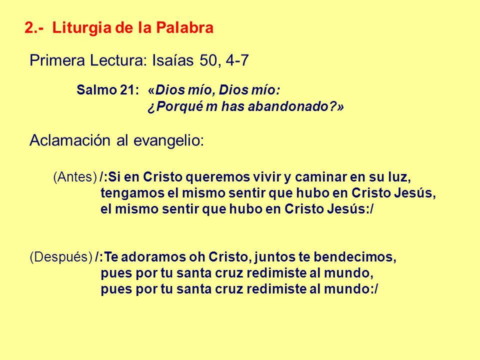 2.- Liturgia de la Palabra