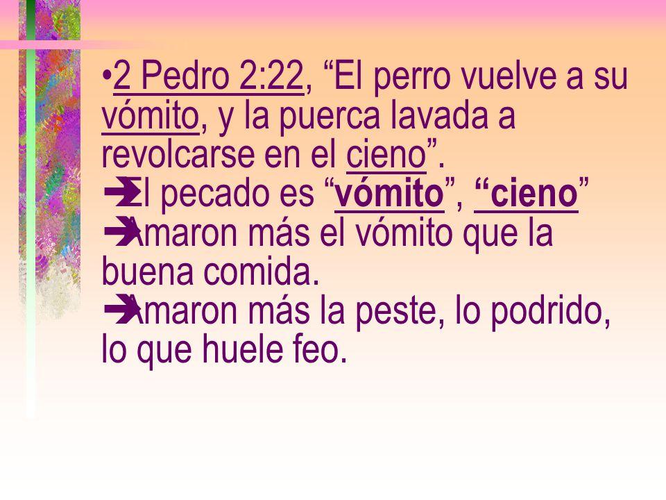 2 Pedro 2:22, El perro vuelve a su vómito, y la puerca lavada a revolcarse en el cieno .