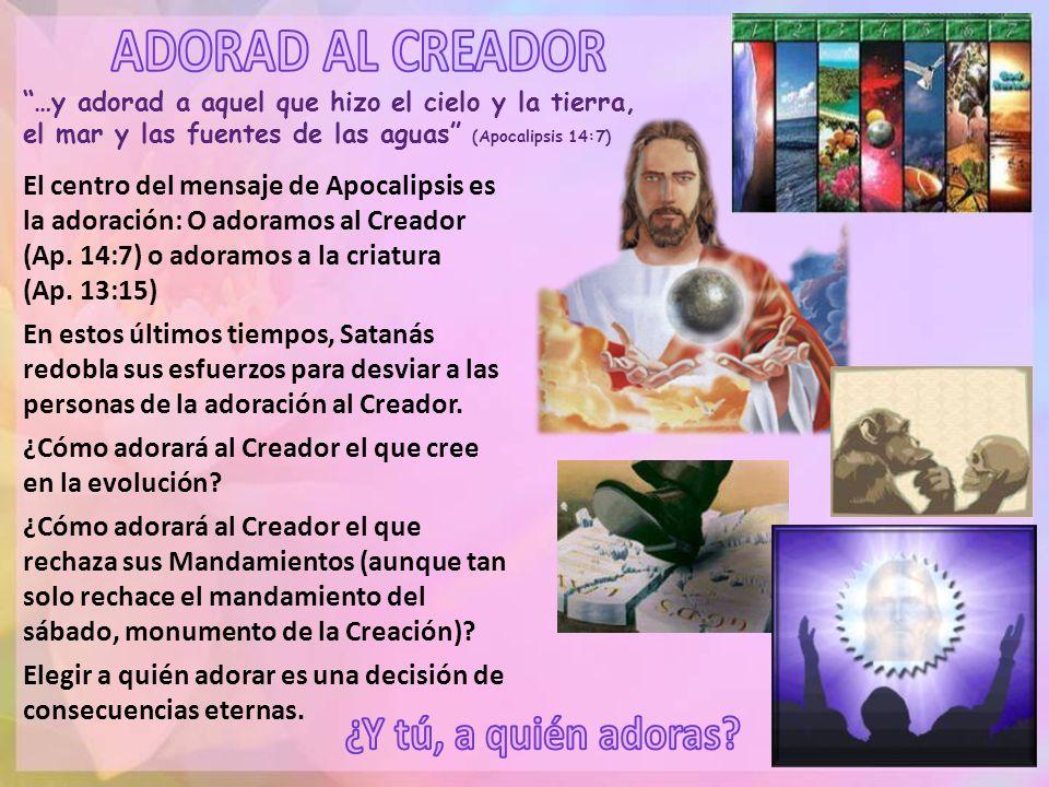 ¿Cómo adorará al Creador el que cree en la evolución