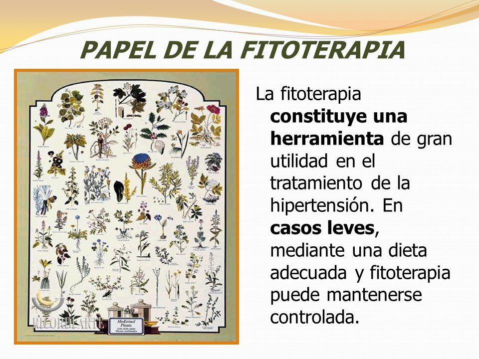 PAPEL DE LA FITOTERAPIA