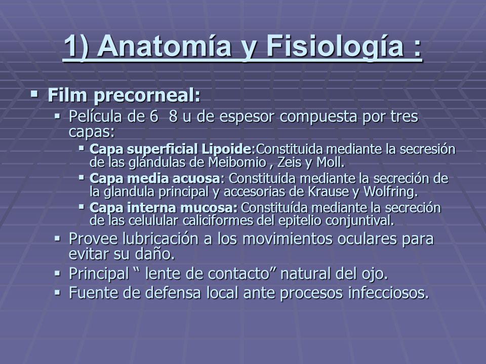 1) Anatomía y Fisiología :
