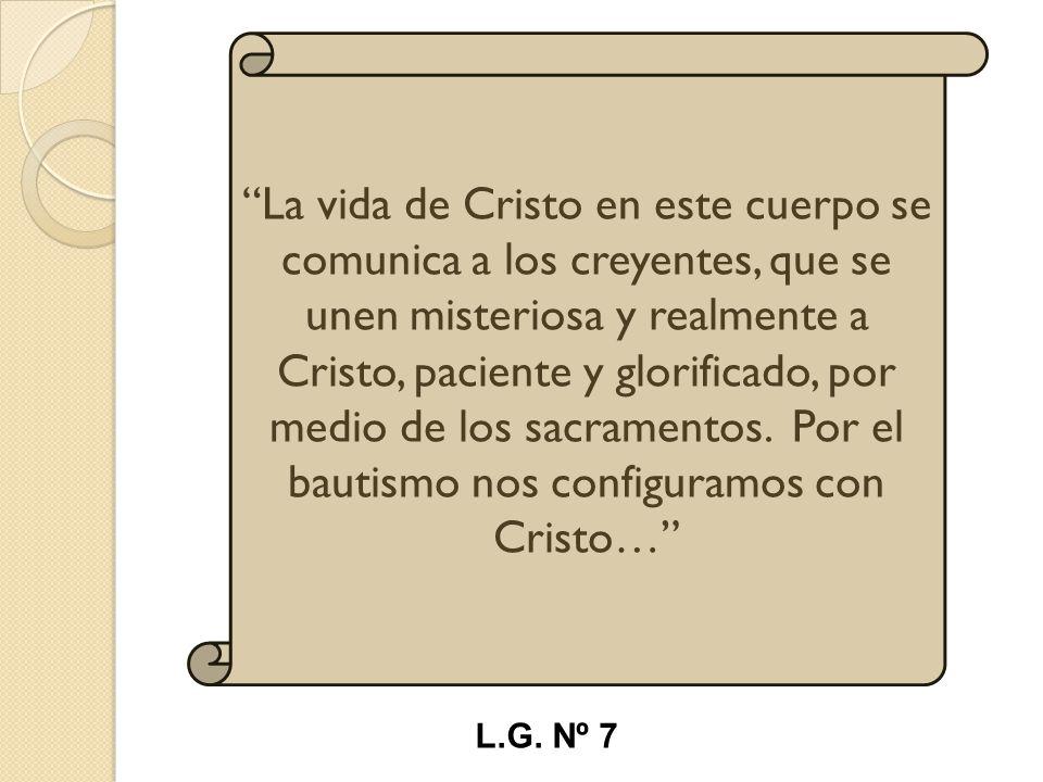 La vida de Cristo en este cuerpo se comunica a los creyentes, que se unen misteriosa y realmente a Cristo, paciente y glorificado, por medio de los sacramentos. Por el bautismo nos configuramos con Cristo…