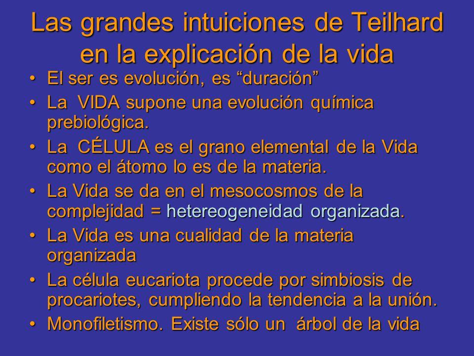 Las grandes intuiciones de Teilhard en la explicación de la vida