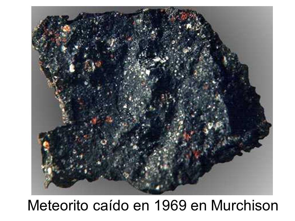 Meteorito caído en 1969 en Murchison