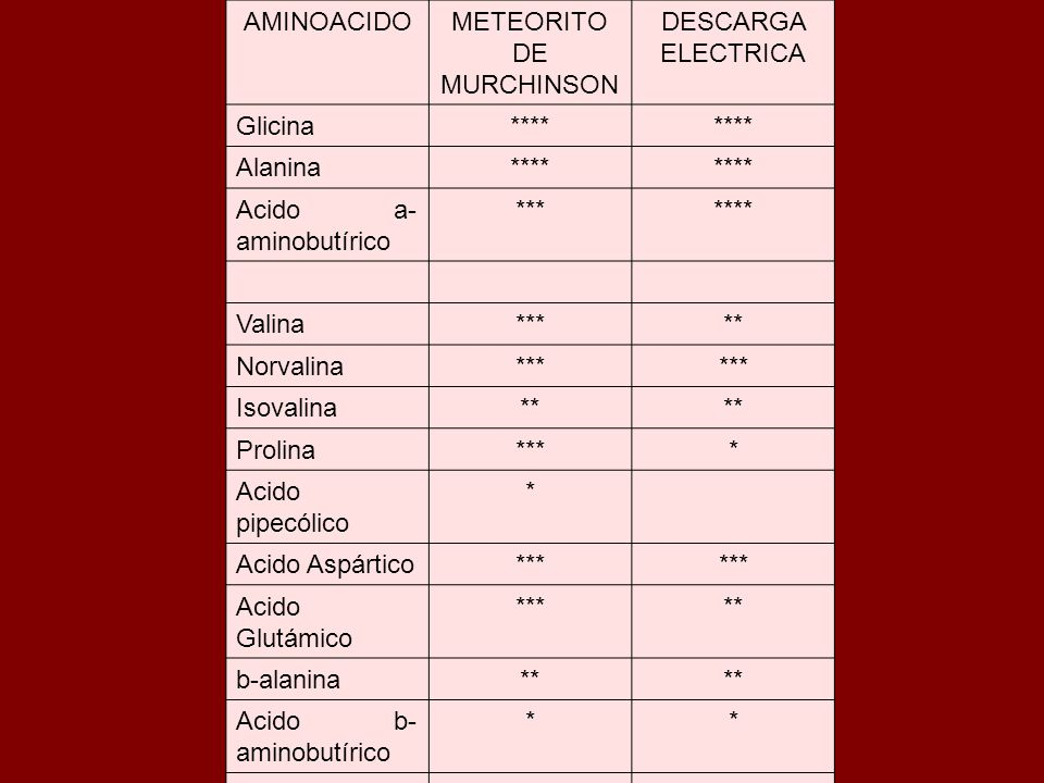 METEORITO DE MURCHINSON