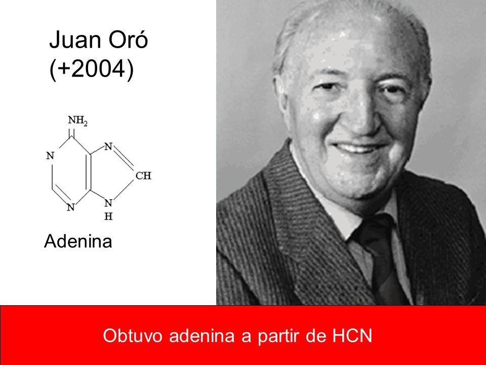 Obtuvo adenina a partir de HCN