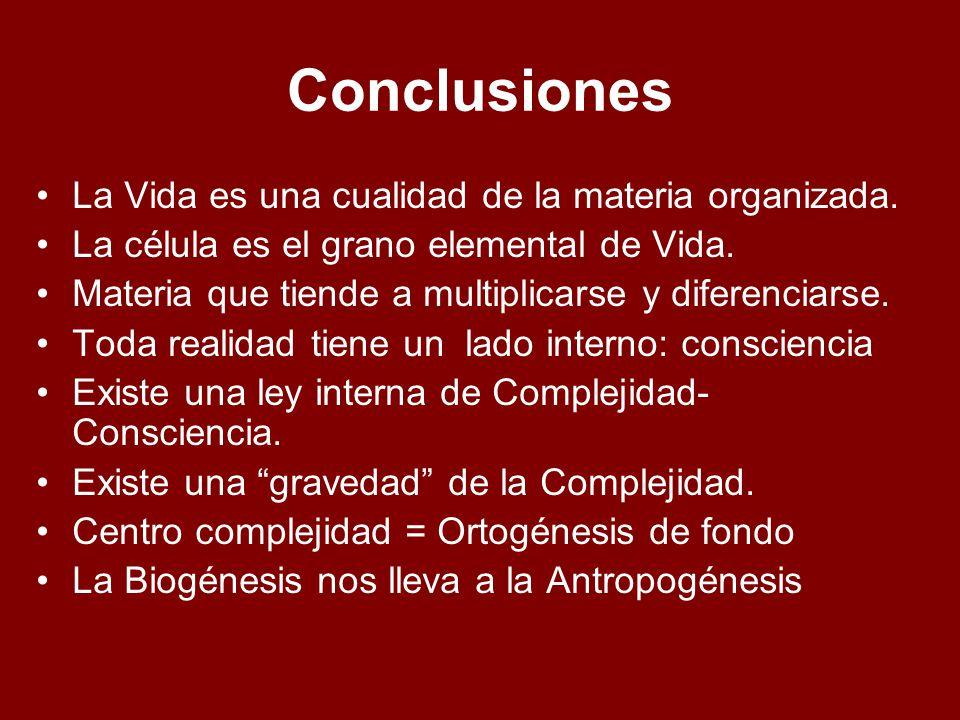 Conclusiones La Vida es una cualidad de la materia organizada.