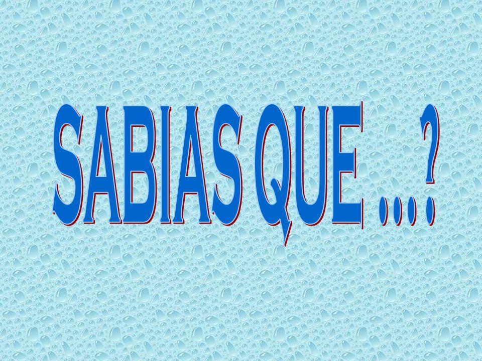 SABIAS QUE ...