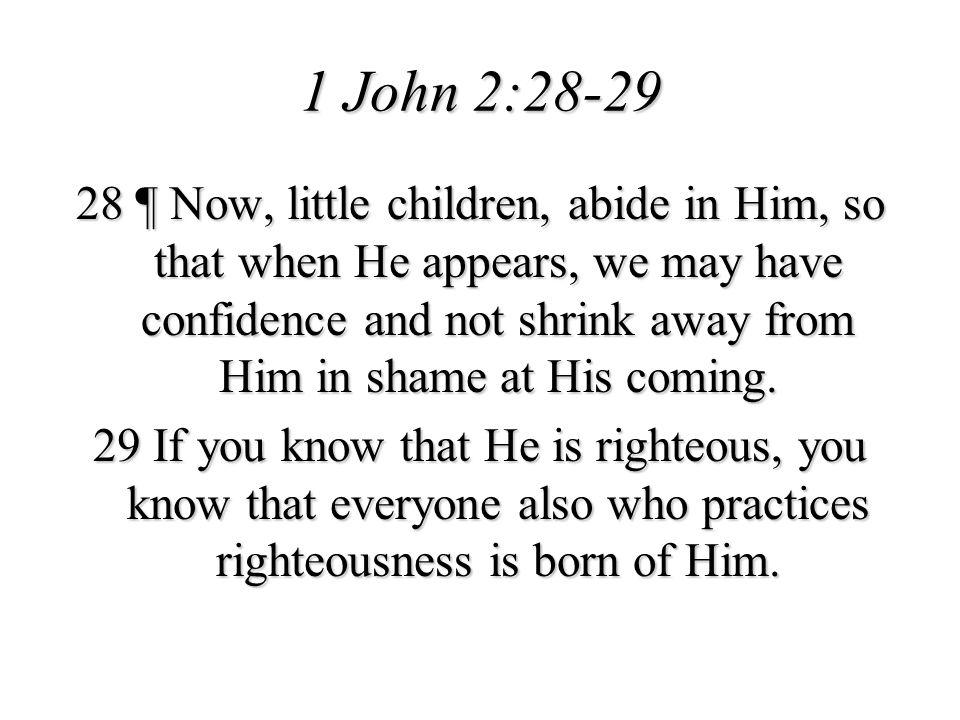 1 John 2:28-29