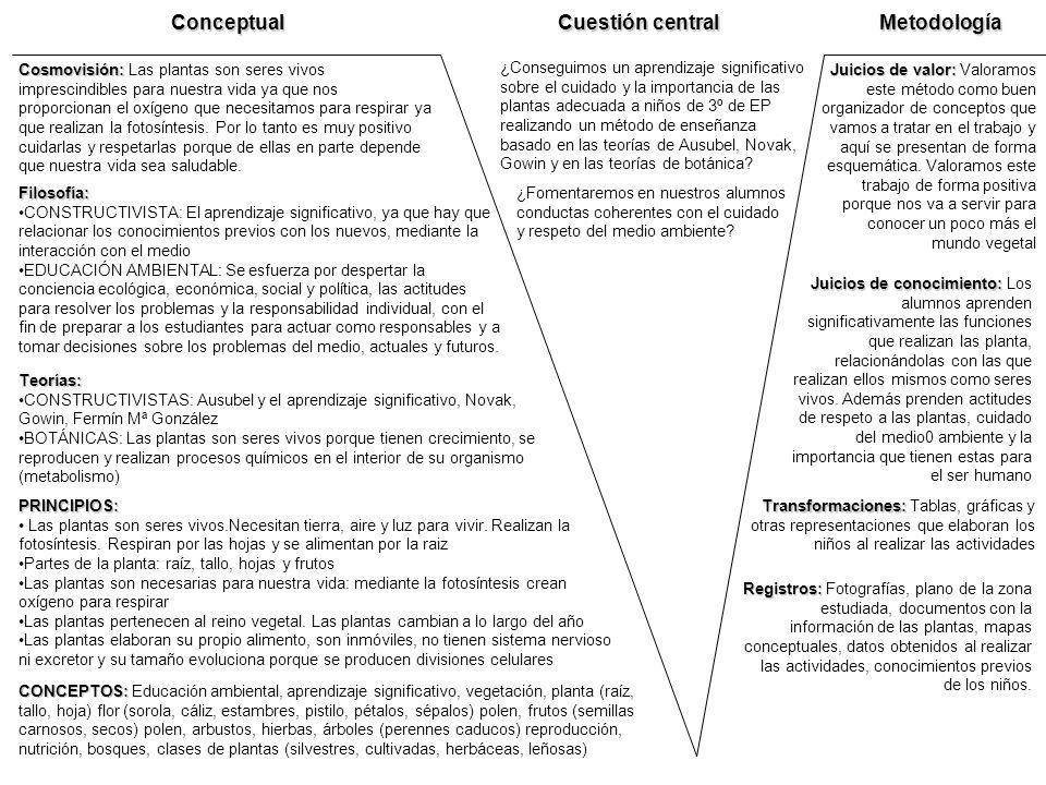 Conceptual Cuestión central Metodología