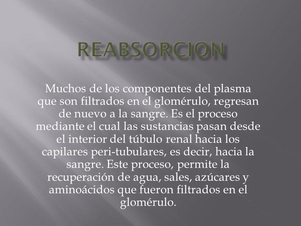 REABSORCION