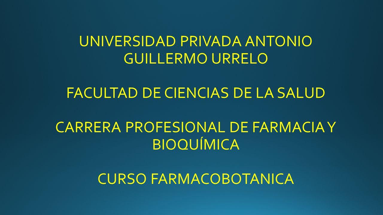 UNIVERSIDAD PRIVADA ANTONIO GUILLERMO URRELO FACULTAD DE CIENCIAS DE LA SALUD CARRERA PROFESIONAL DE FARMACIA Y BIOQUÍMICA CURSO FARMACOBOTANICA