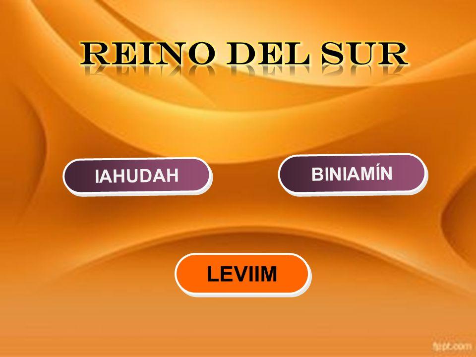 REINO DEL SUR BINIAMÍN IAHUDAH LEVIIM