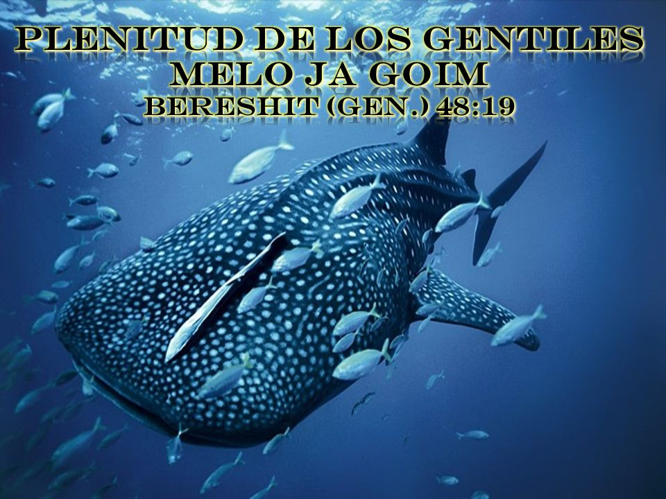 PLENITUD DE LOS GENTILES MELO JA GOIM BERESHIT (GEN.) 48:19
