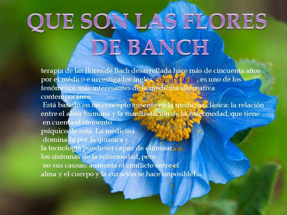 QUE SON LAS FLORES DE BANCH