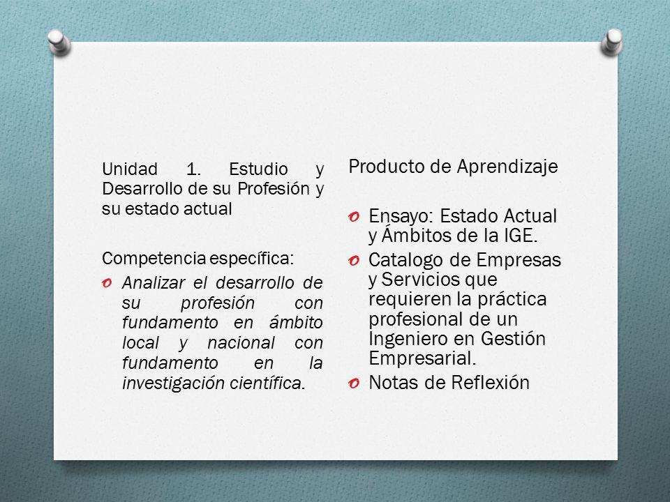 Producto de Aprendizaje Ensayo: Estado Actual y Ámbitos de la IGE.