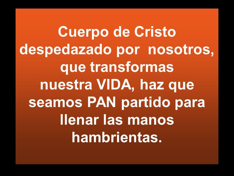 Cuerpo de Cristo despedazado por nosotros, que transformas nuestra VIDA, haz que seamos PAN partido para llenar las manos hambrientas.