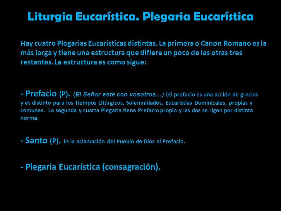 Liturgia Eucarística. Plegaria Eucarística