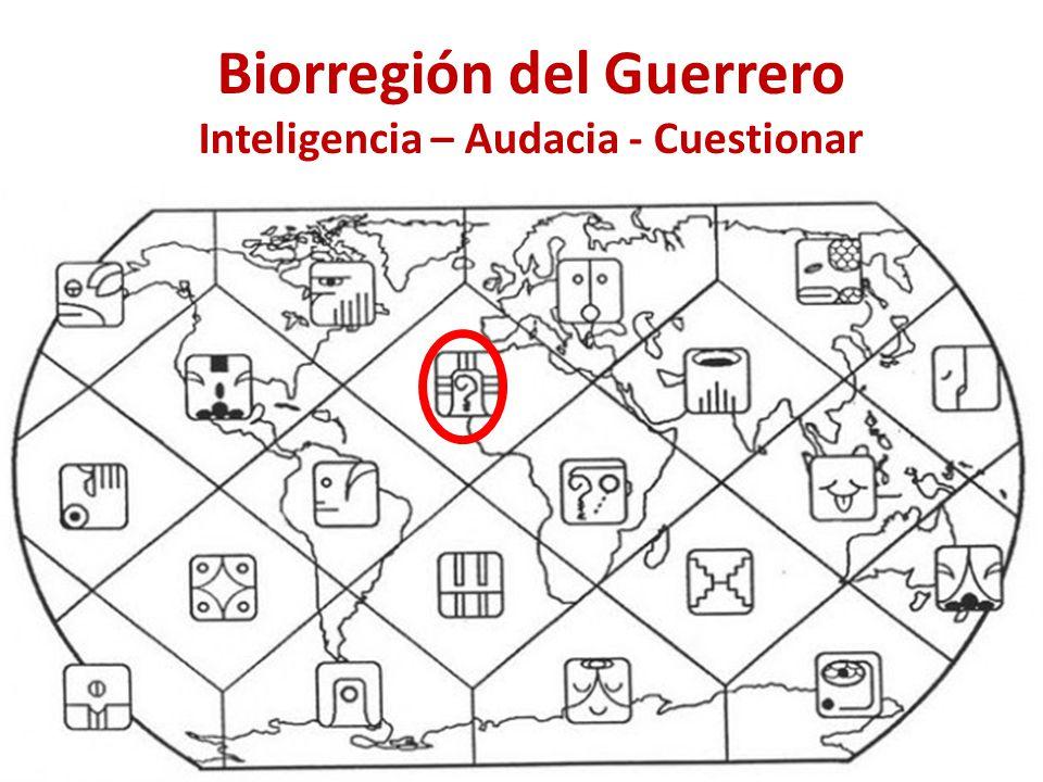 Biorregión del Guerrero Inteligencia – Audacia - Cuestionar