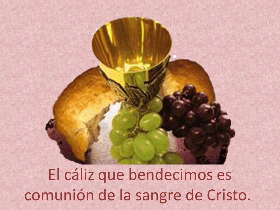 El cáliz que bendecimos es comunión de la sangre de Cristo.