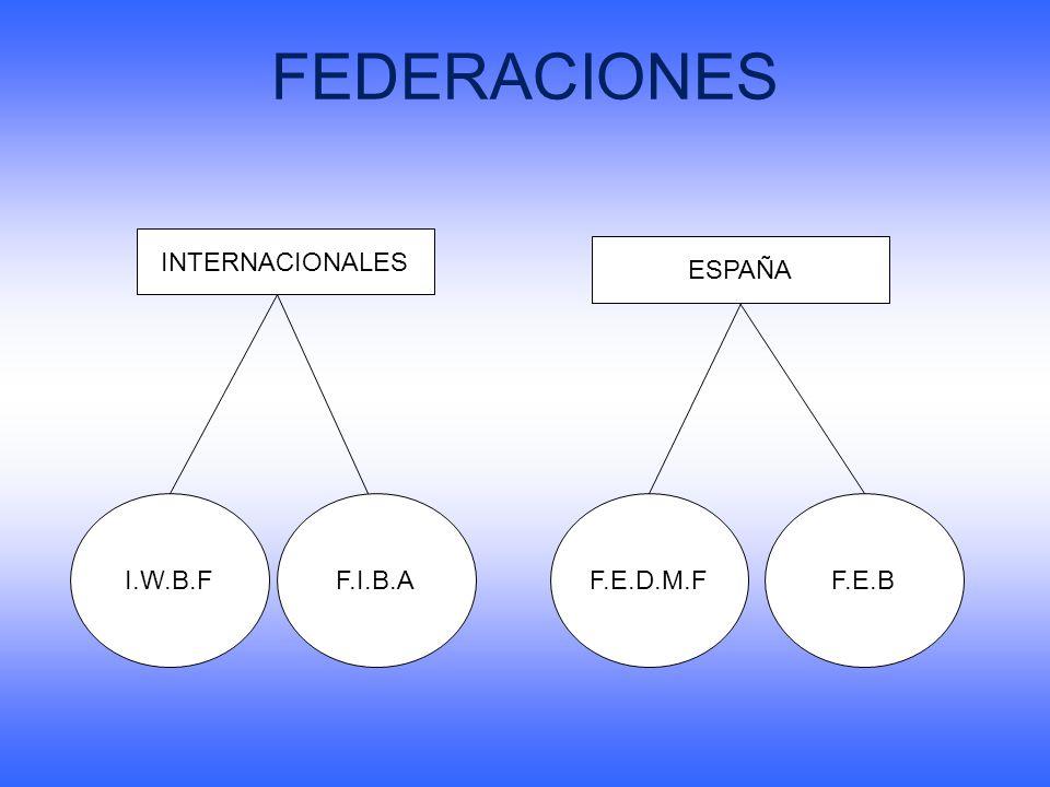 FEDERACIONES INTERNACIONALES ESPAÑA I.W.B.F F.I.B.A F.E.D.M.F F.E.B