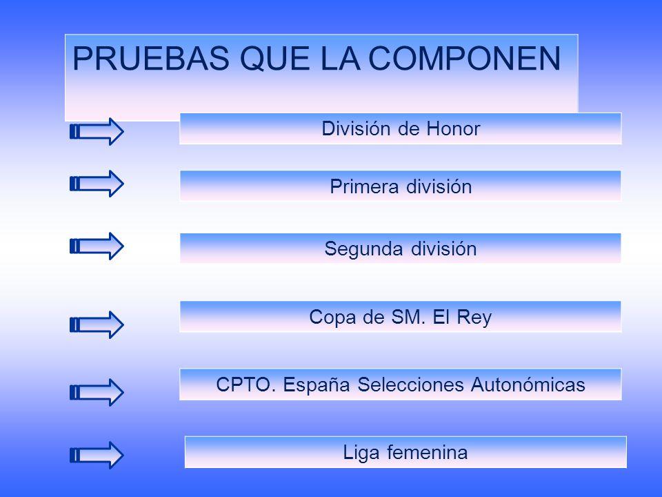 CPTO. España Selecciones Autonómicas