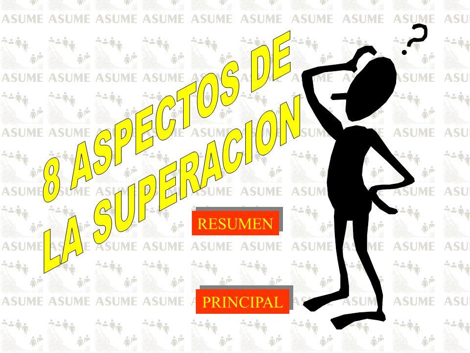 8 ASPECTOS DE LA SUPERACION RESUMEN PRINCIPAL