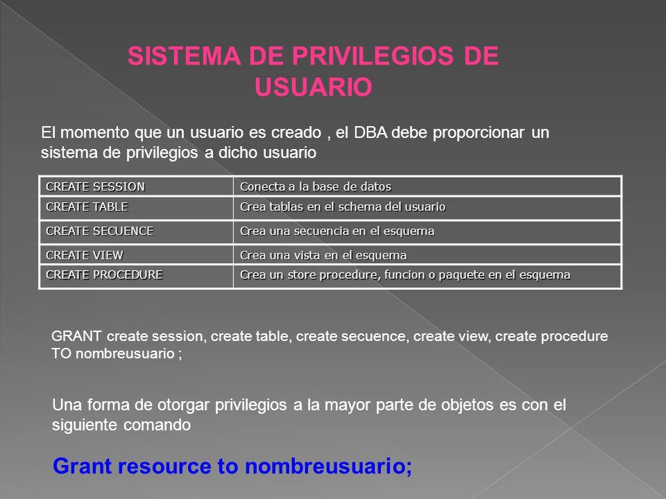 SISTEMA DE PRIVILEGIOS DE USUARIO