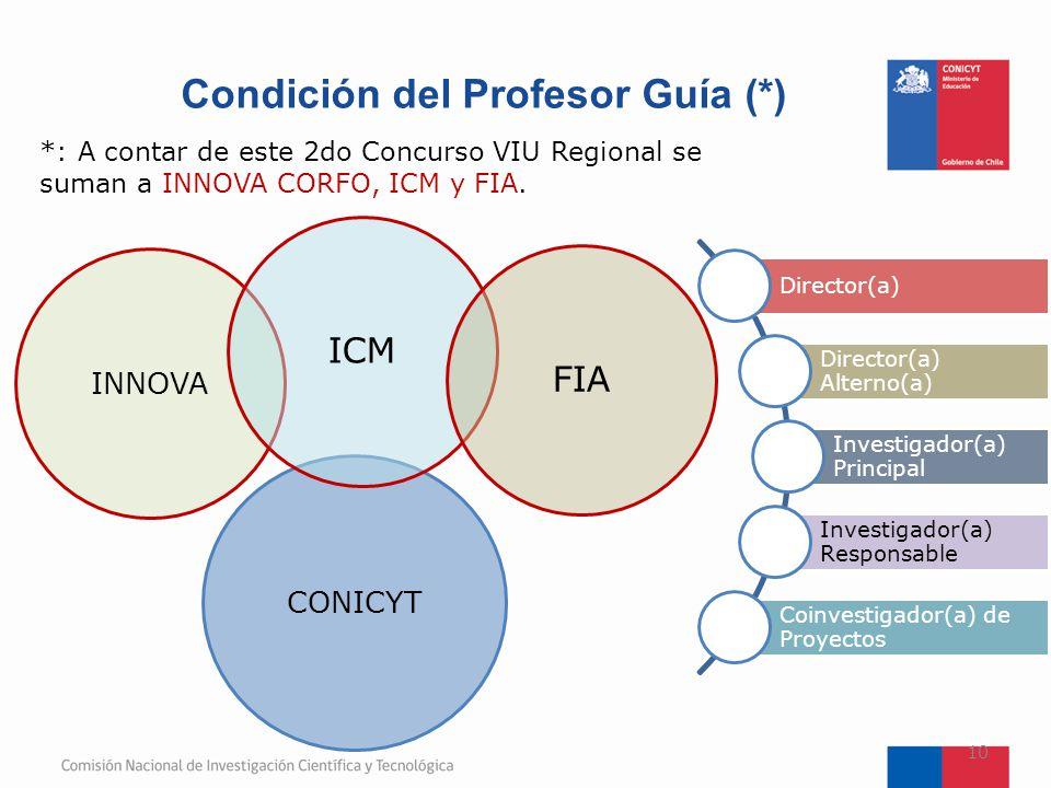 Condición del Profesor Guía (*)
