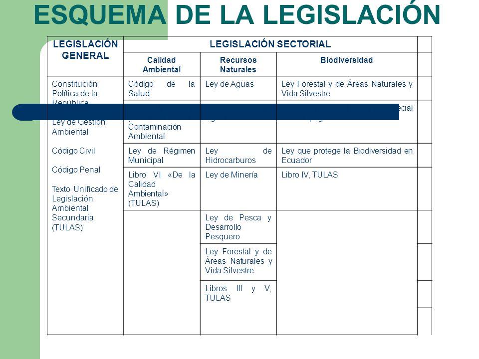 ESQUEMA DE LA LEGISLACIÓN