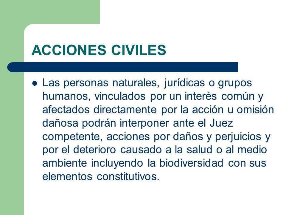 ACCIONES CIVILES