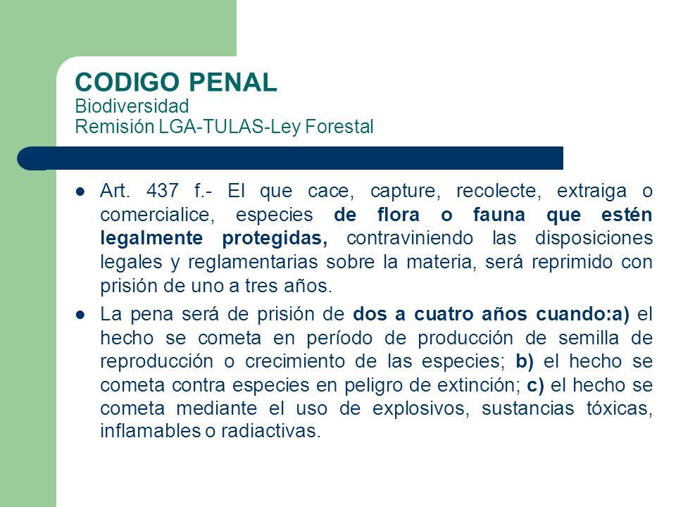 CODIGO PENAL Biodiversidad Remisión LGA-TULAS-Ley Forestal