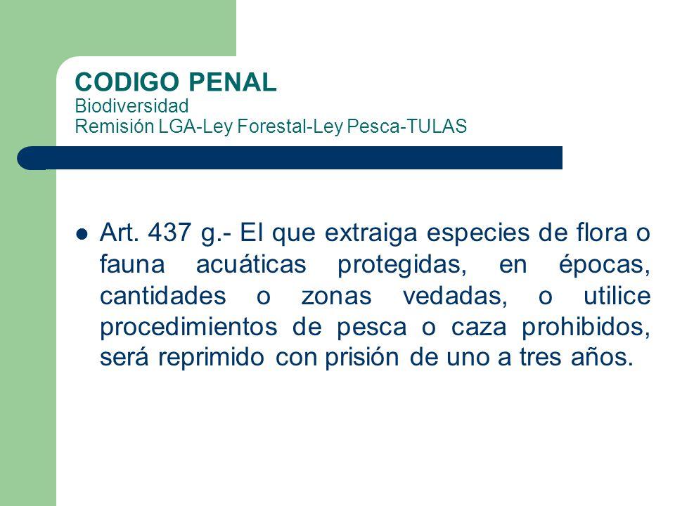 CODIGO PENAL Biodiversidad Remisión LGA-Ley Forestal-Ley Pesca-TULAS